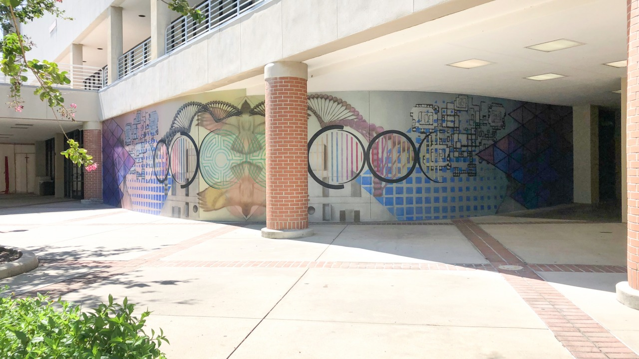 Wide angle image of geometric patterns in mural